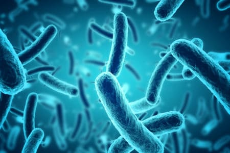 E. Coli Poisoning Outbreak Lawyers