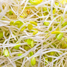 Jonathans Sprouts Recall Lawsuit