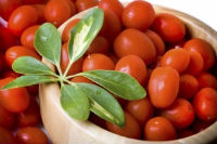 Taylor Farms Grape Tomato Recall Lawsuit