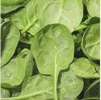 Taylor Farms Salad Recall Lawsuit