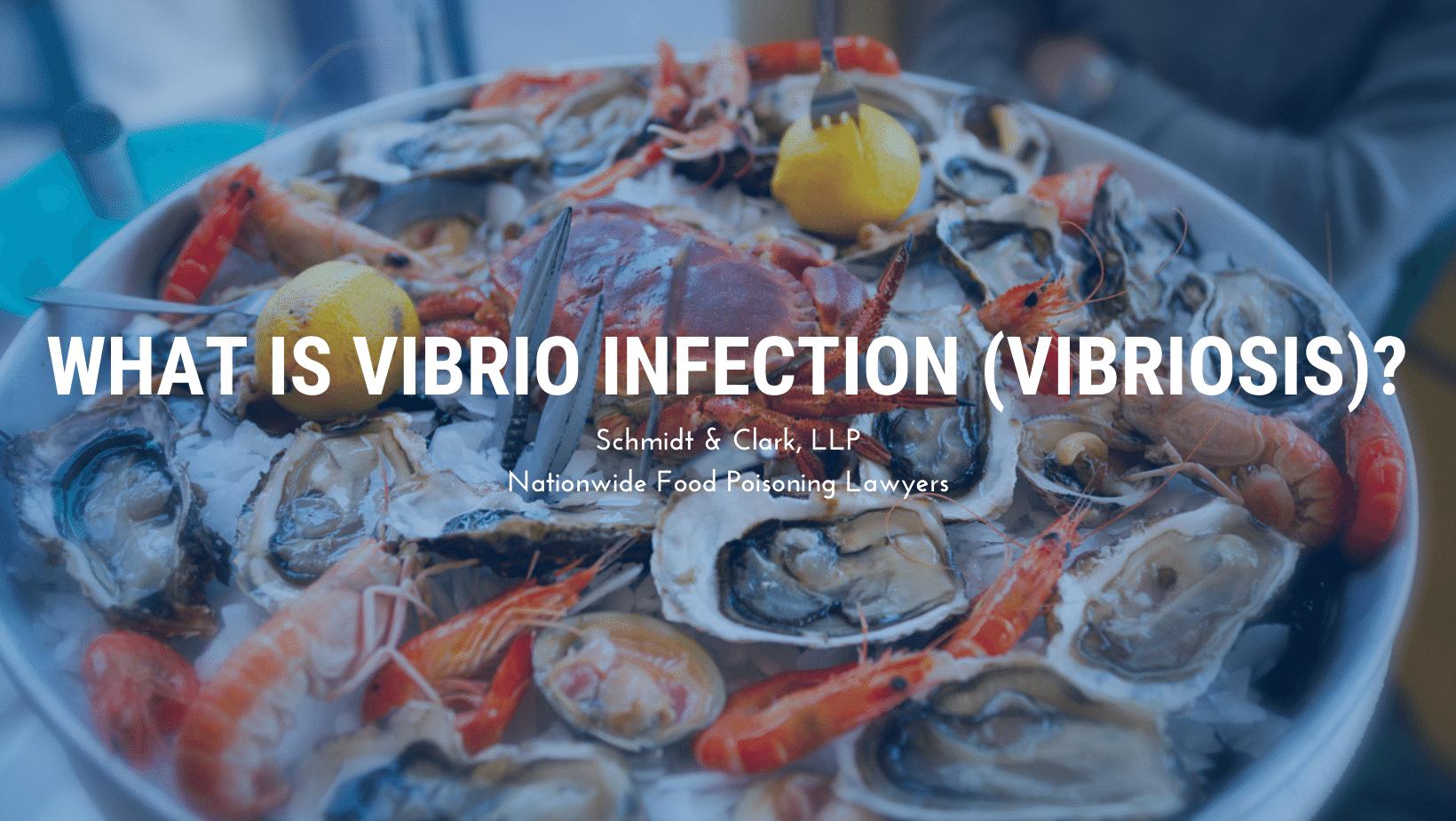 Vibrio Infection vibriosis