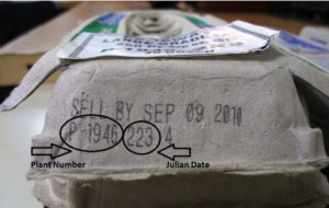 egg safety - recall august 2010